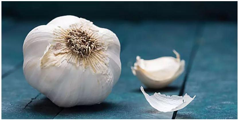 http://pakistanisinkuwait.com/images/garlic.jpg
